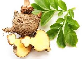Glucomannan Market anticipated to witness healthy CAGR over 2018-2024