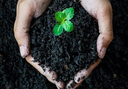 Future of Humic Acid Market in Global Industry 2018 -2024