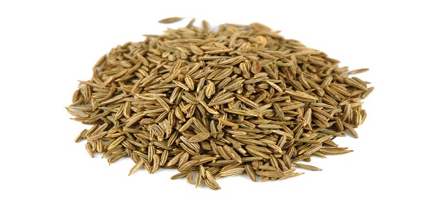 Caraway Seeds Market Revenue, Opportunity, Segment and Key Trends 2017-2024