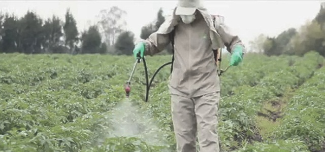 Glyphosate Market Size Set for Continued Growth