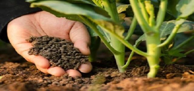 Organic Fertilizers Market Trends, Regional Analysis & Growth Forecast
