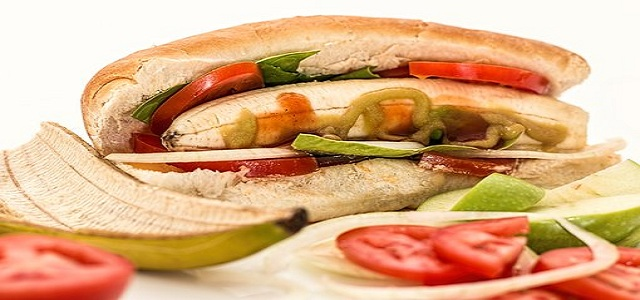 Savoury Flavour Blends Market is likely to show significant growth between 2017 – 2024