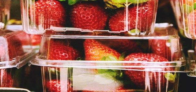 Australia faces strawberry safety scare, Woolworths halts needle sales