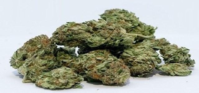 Connecticut secures first legislative win towards legalizing marijuana