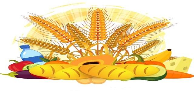 European Corn Fiber Market Demand Analysis & Share by Regions