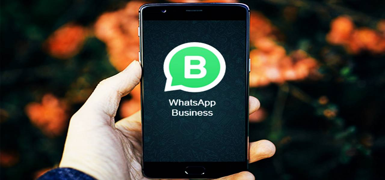 WhatsApp rolls out its business app for android in select nations